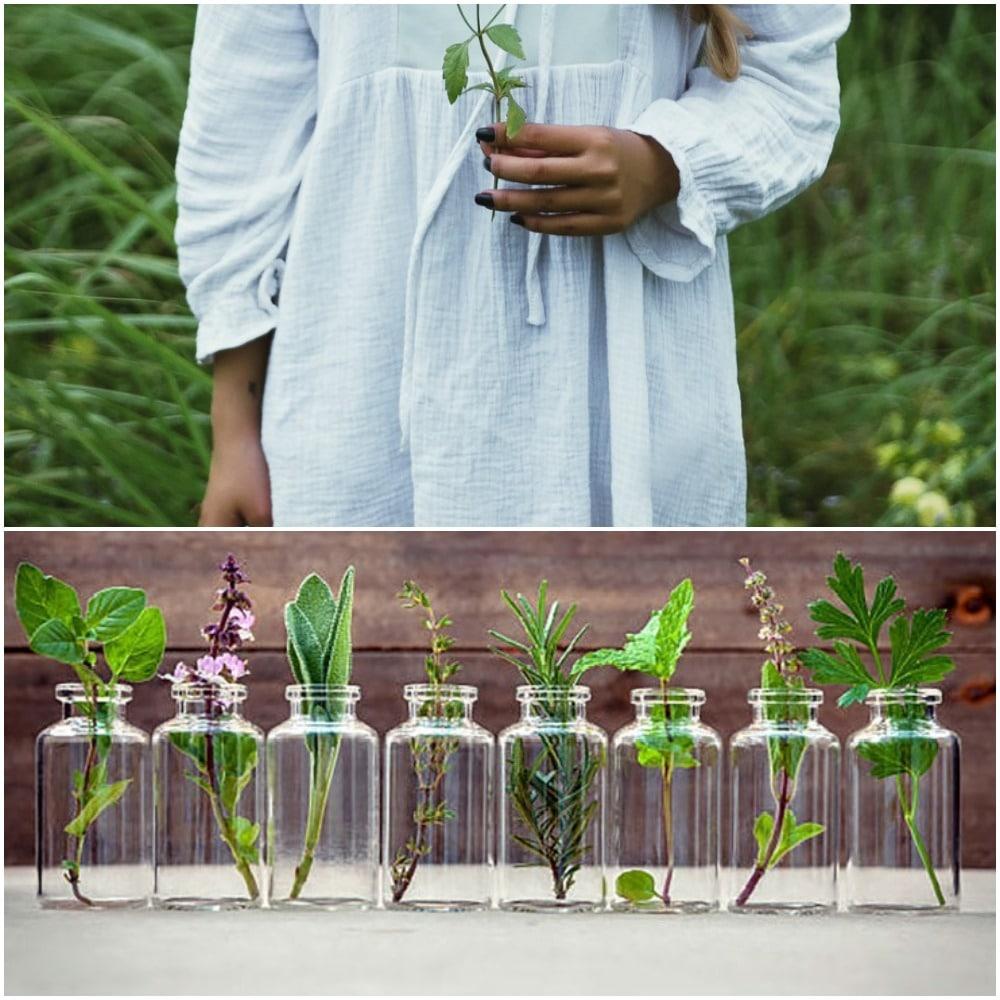 aromatherapy collage